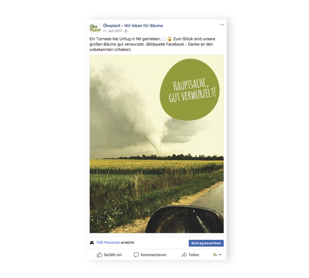 social-media_oekoplant_designkitchen-4.jpg