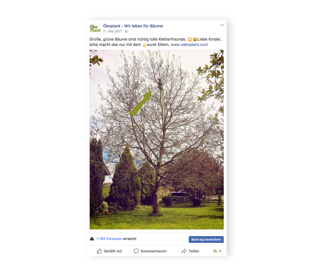 social-media_oekoplant_designkitchen-6.jpg