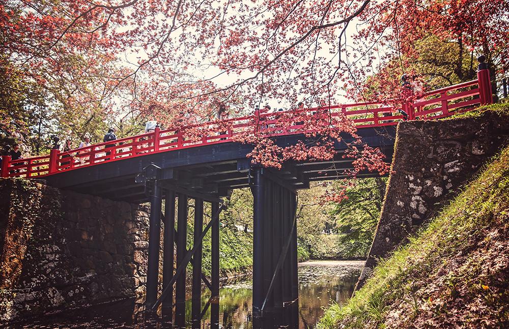 Spring time in Hirosaki.