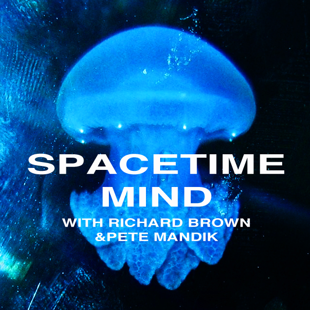 Space Time Mind
