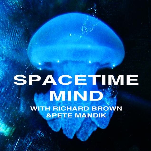 pete mandik this is philosophy of mind pdf