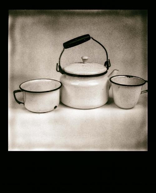 Polaroid 680
