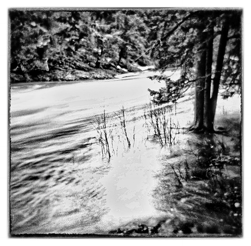 Holga 120N with Ilford Pan F developed in Rodinal 1:25 fpr 12 minutes