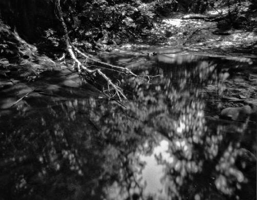 Harman Titan 4x5 Pinhole with Ilford HP+ developed in HC-110 Dilution B