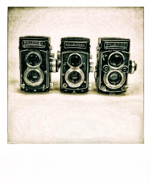 L-R (Rolleiflex T, Rolleicord Vb, and Rolleiflex 3.5F Xenotar)