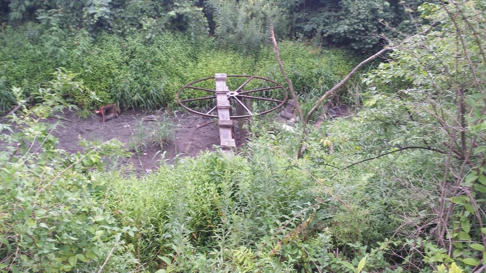 B J's - Existing Pond