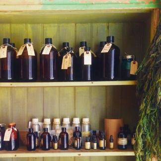 I nostri ingredienti - Guarda le foto dei nostri ulivi e della salvia haenkei dalla nostra fattoria biologica sulle colline ldella Liguria.