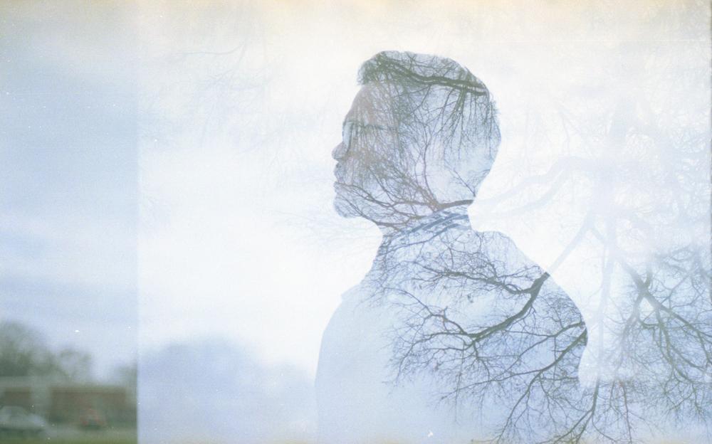 joey.trees-1.jpg