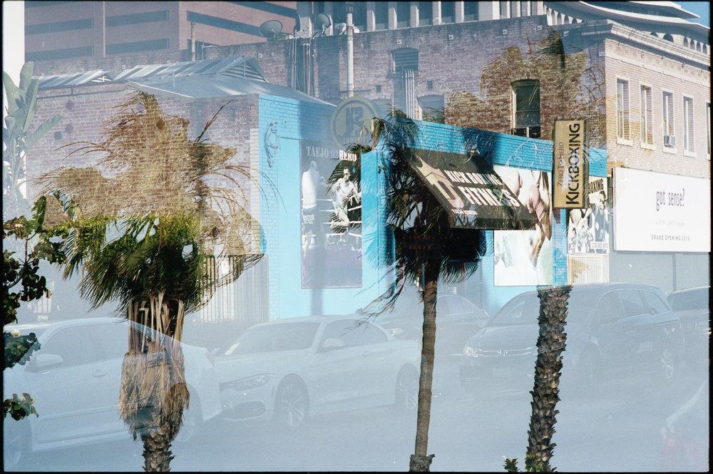 LA-PORTRA04.jpg