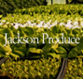 JacksonProduce.png
