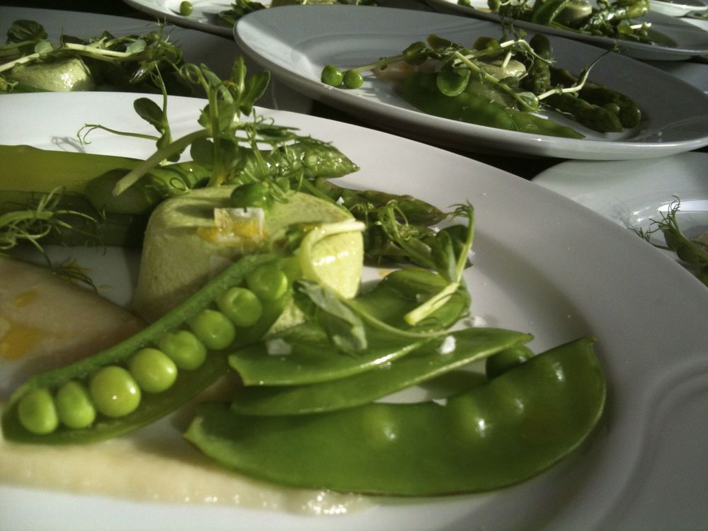 SNOW PEA FLAN SINGLE PLATED.jpg