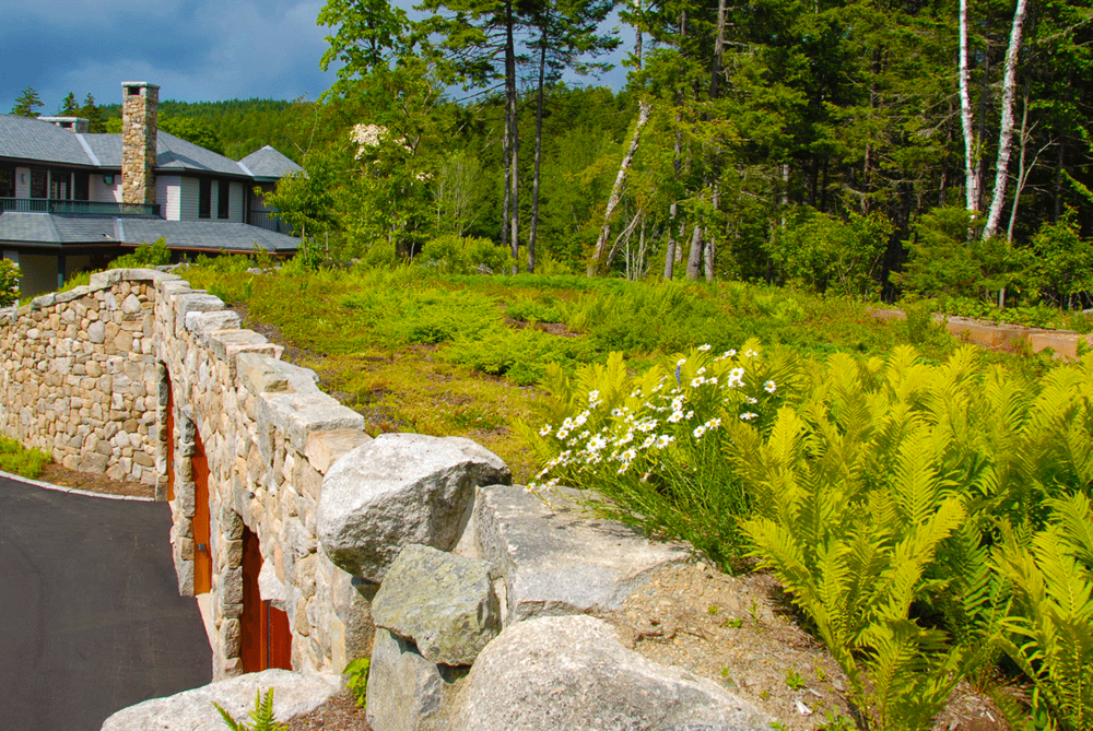 Glen_GAte_MAine_greenroof_HP.png