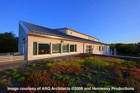 Potter League Animal Shelter, Image courtesy of ARQ Architects and Hennessy Productions