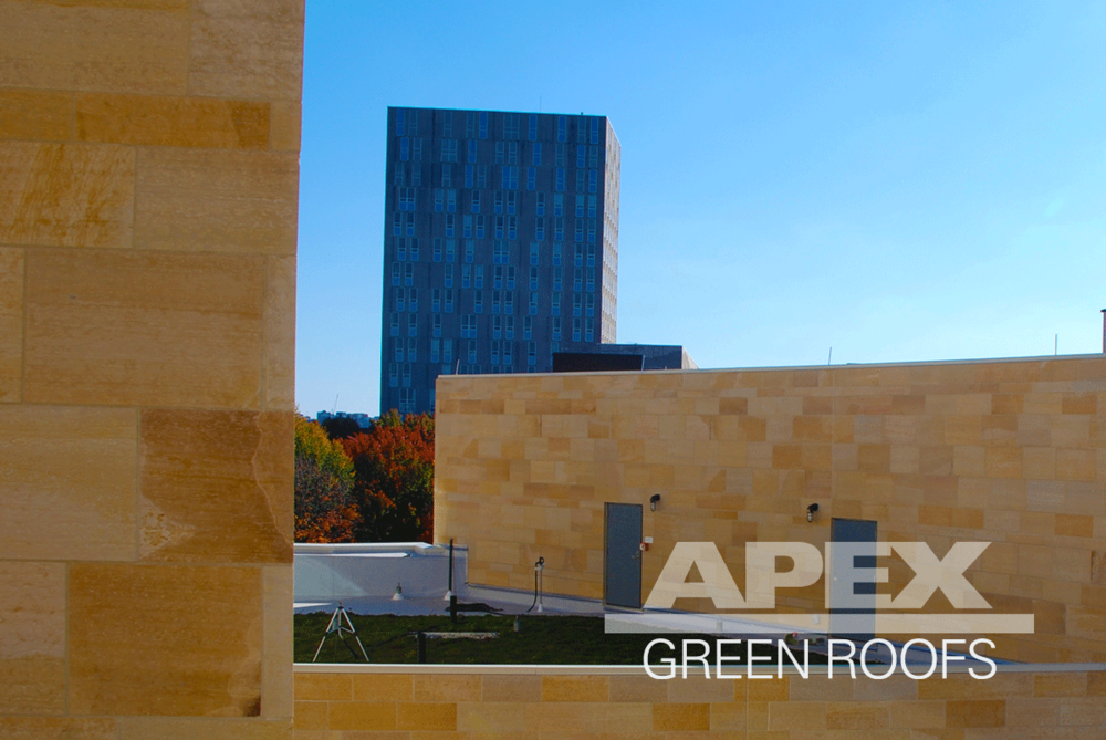 Harvard_Business_School_Tata_Hall_3_greenroof.png