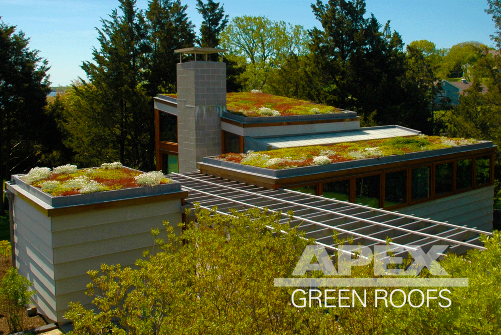 Nice View Residential Green Roof Projects. Shown: Shelter Island NY