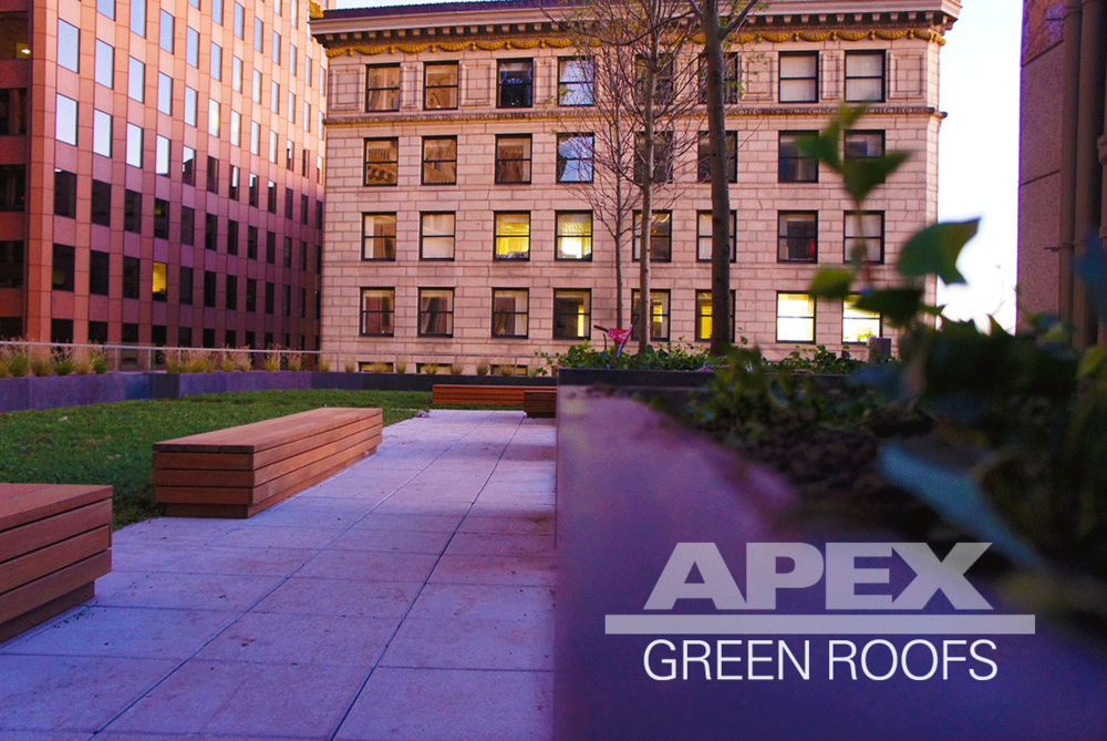 Press Apex Green Roofs