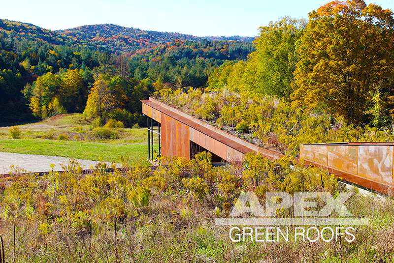 "Installed in 2015 and a current green roof maintenance client: the ""Earth House"" is the Artist's Residence at  Guilford Sound in Vermont . Approximately 6,000 sq feet, the vegetated roof abuts the meadow behind and truly blends with the landscape. The soil depth starts at 6"" on the eaves, with a 10"" blending zone between the green roof and meadow."
