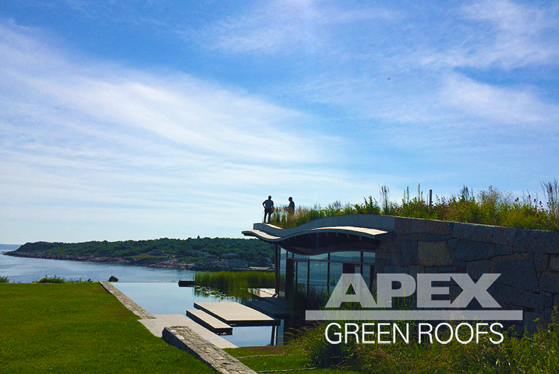 "Installed in 2011 and a current green roof maintenance client: a private residence in Gloucester MA overlooking Folly Cove. With a 12"" dual media  system of drainage and growth media, the living roof blends into the landscape."