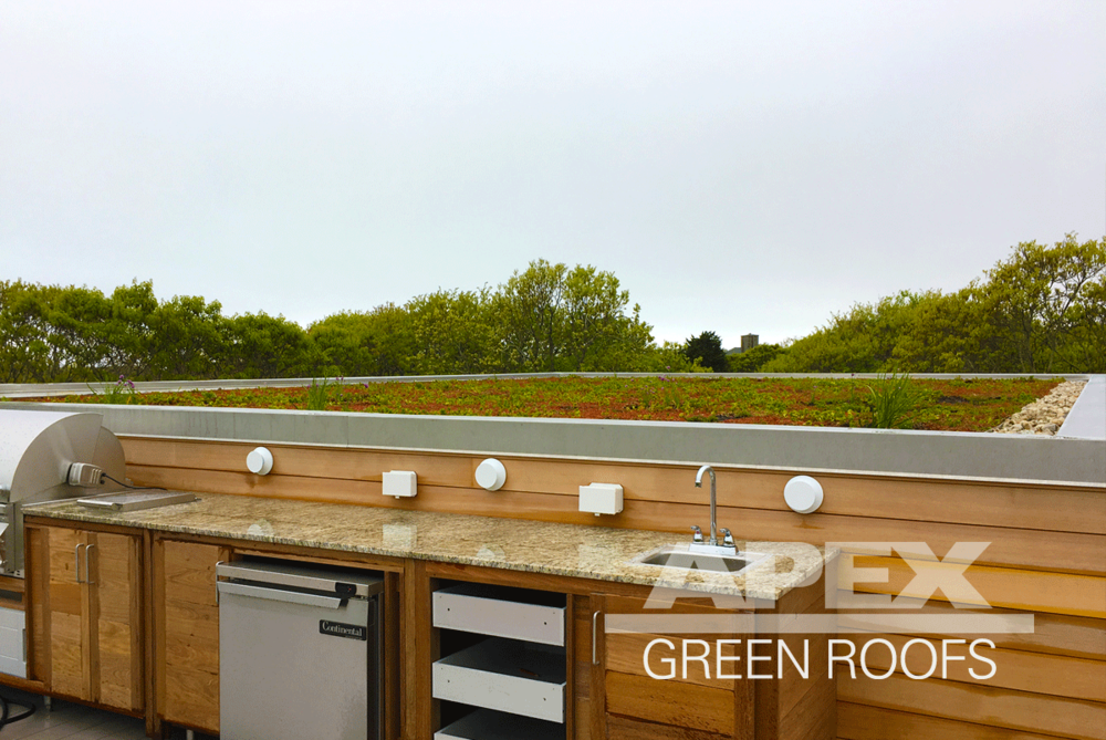 "Installation early 2017 and current green roof maintenance client: a private residence in Martha's Vineyard MA, this vegetated roof deck is approximately 1960 sq feet of pre-grown sedum mat, has a soil depth of 4"" and a  maximum saturated weight of 28 lbs/sf. Originally intended to be all sedum mat, the owner asked for more plant variety. We cut out swaths of sedum mat and planted around 500 plugs consisting of 20 different plant varieties chosen based on site conditions."