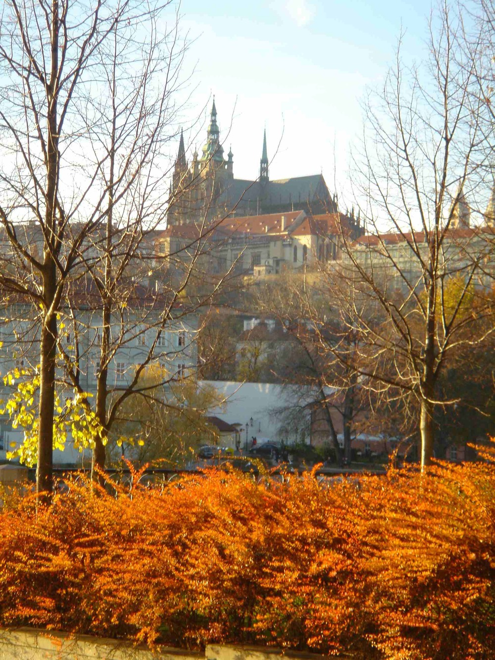 Prague Castle from the left bank of the Vltava River , Czech Republic