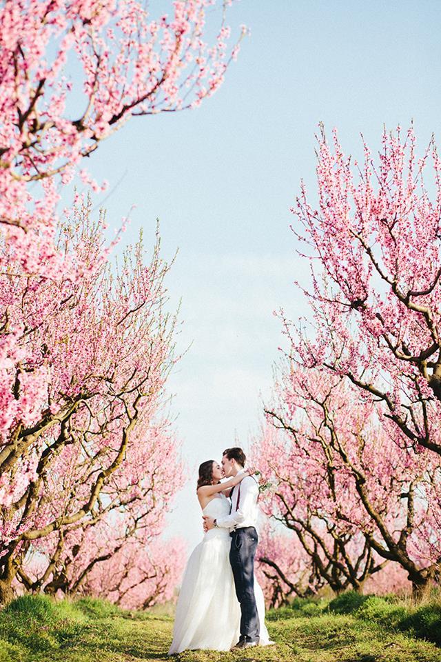 tavaszi esküvő esküvőszervezés Debrecen.jpg