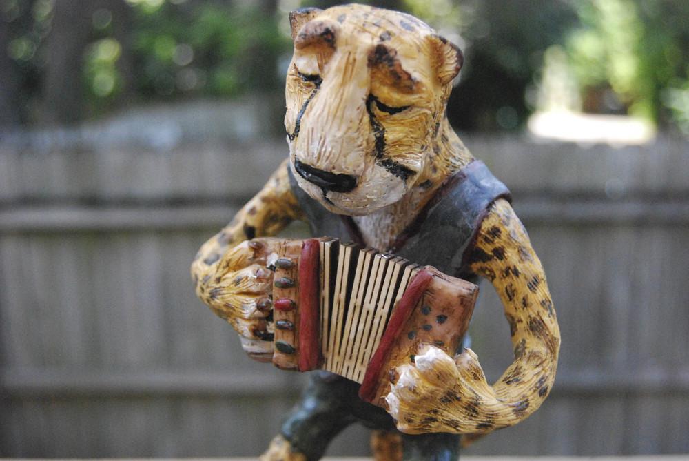 cheetah-3.jpg