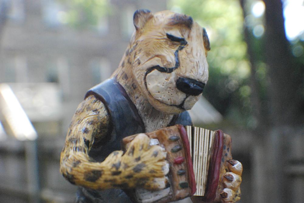 cheetah-6.jpg