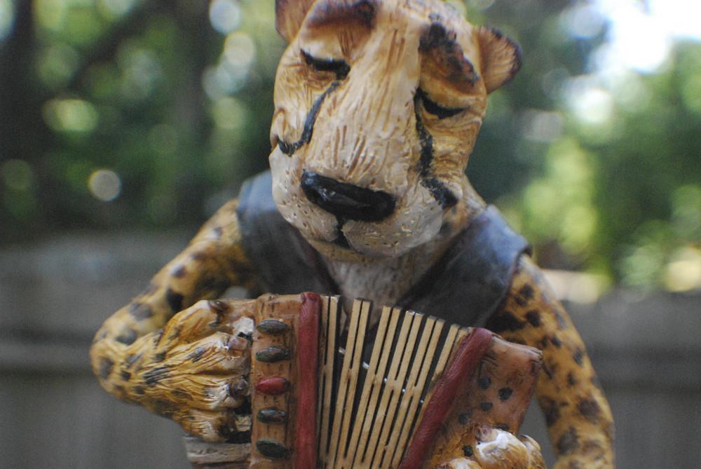 cheetah-7.jpg