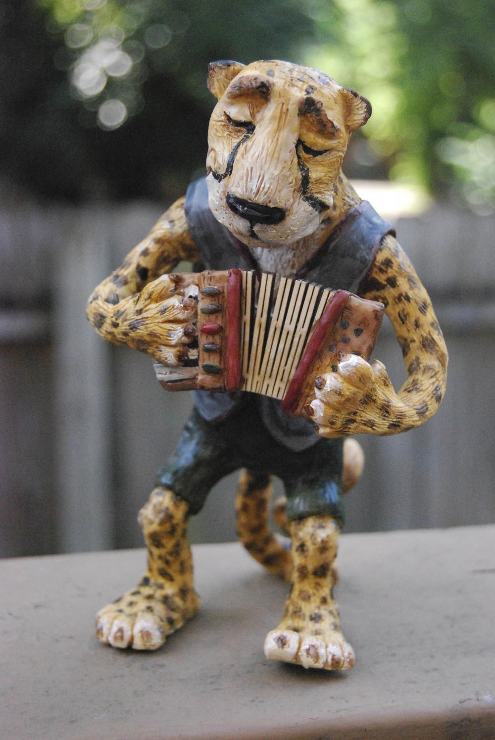 cheetah-8.jpg