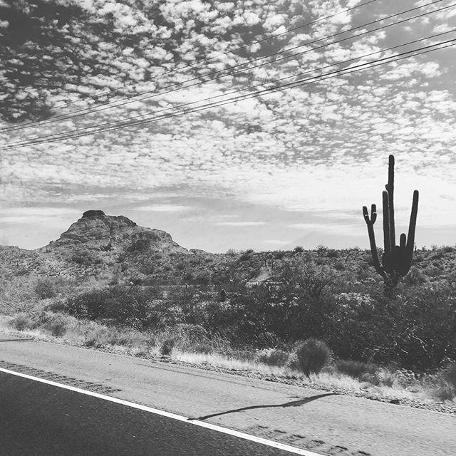 Arizona camping #arizona #desert @ryanwhitingusa @akwhiting2