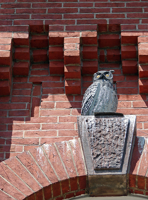 Plastic Owl at Eastern Market, Credit:  Steve Fernie, Flickr