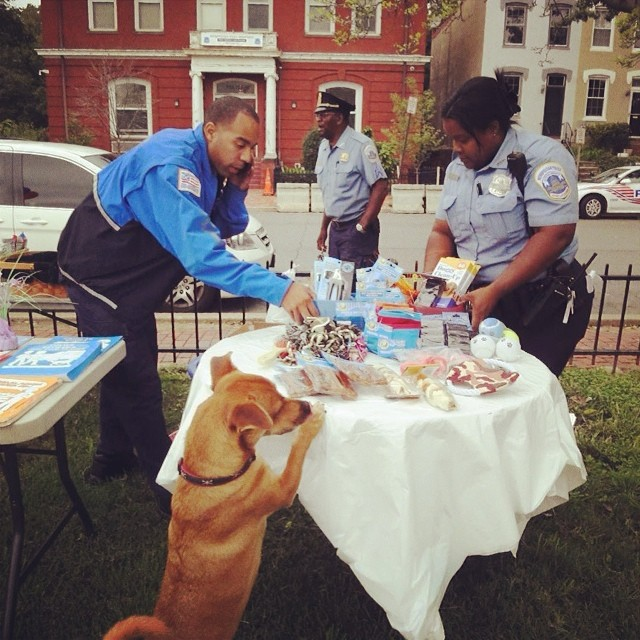 Our great dc cops at doggie park! #boysinblue #dogsandcops #rescuedogs #capitalcritters #philosopherdog #philosophy #springindc