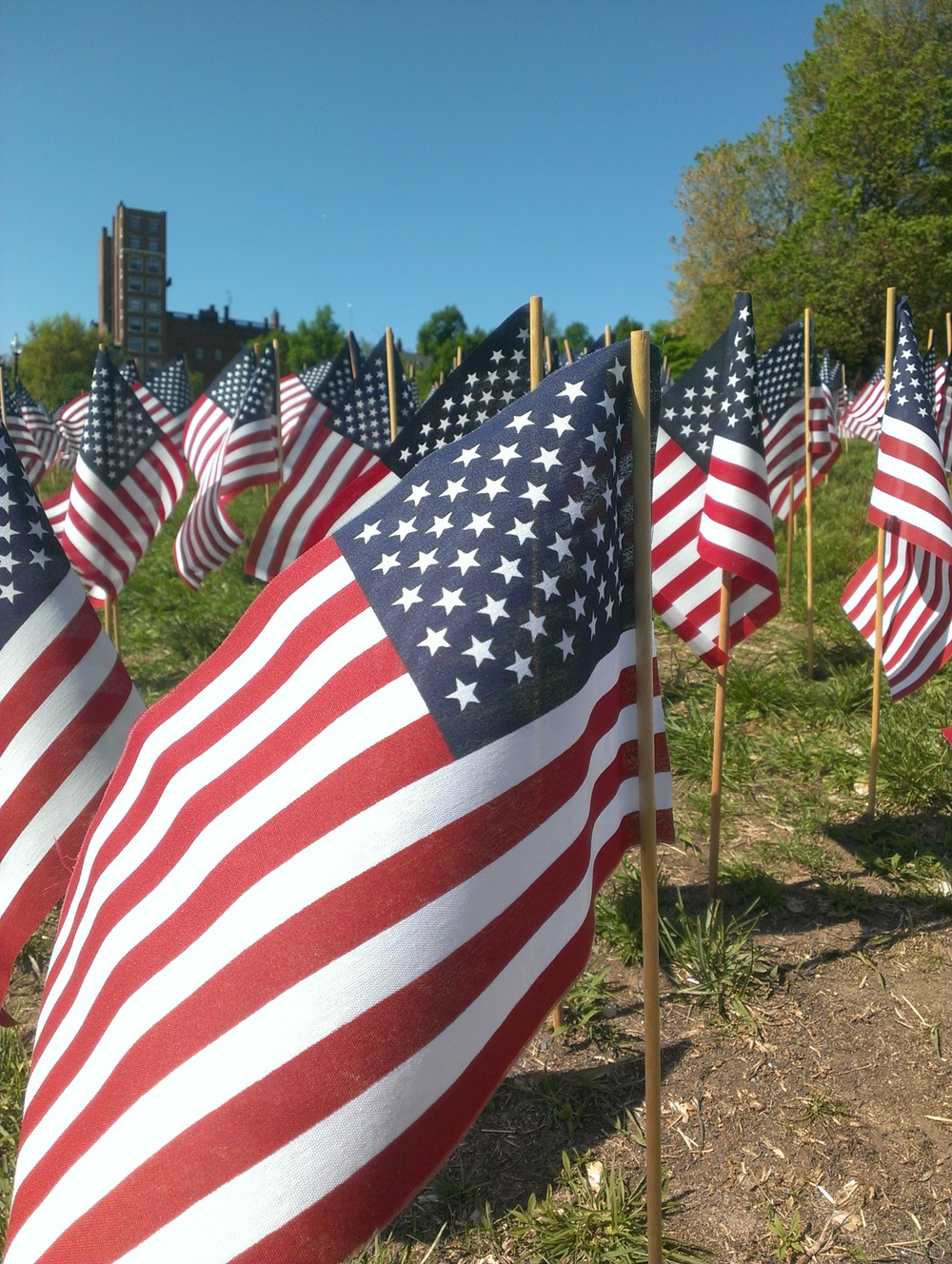 Massachusetts Military Heroes Garden of Flags                                    Photo by @BostonAttitude