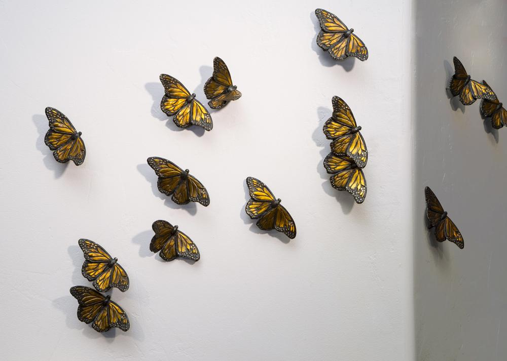 7671Butterflies Web.jpg