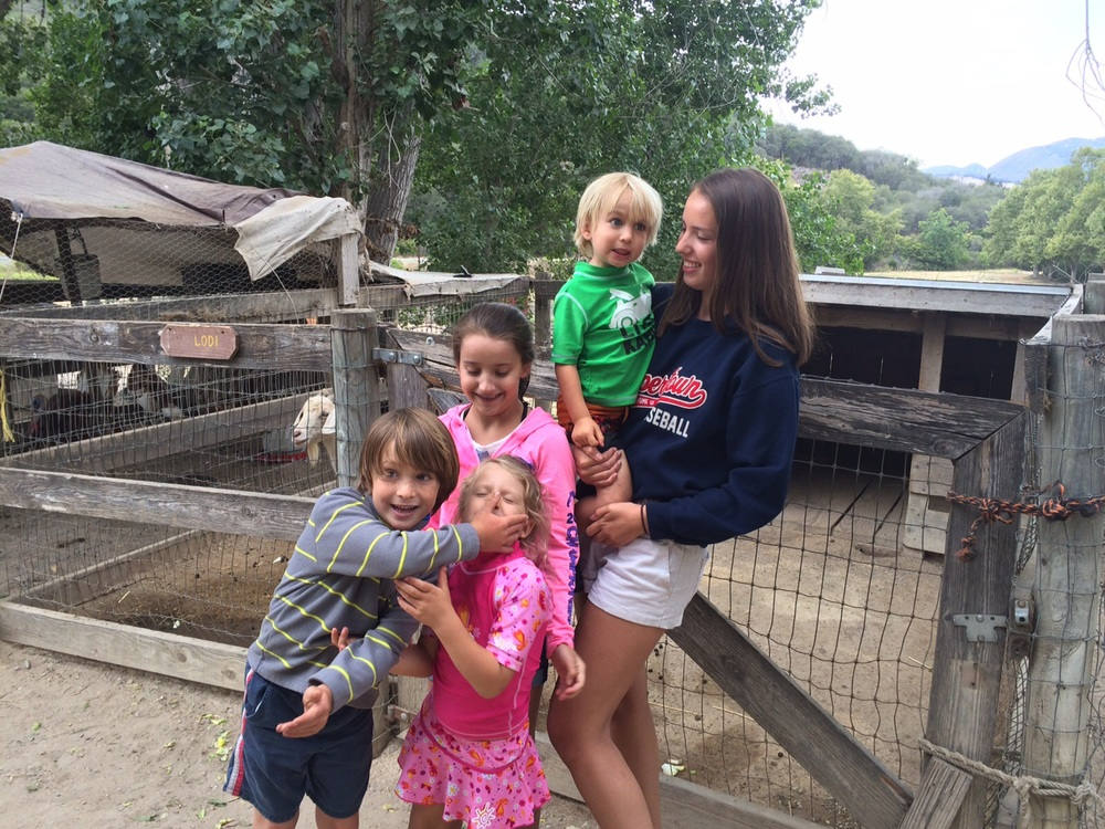 Crazy kiddos at the animal farm.
