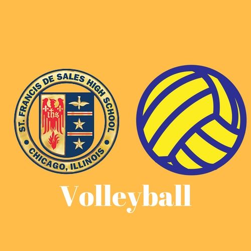 VolleyballSFDS_icon.jpg