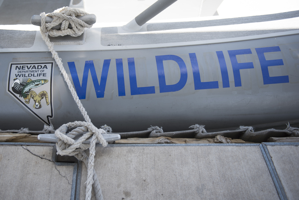 A boat belonging to the Nevada Department of Wildlife is shown at Lake Mead in Boulder City, Friday, July 3, 2015.(Jason Ogulnik/Las Vegas Review-Journal)