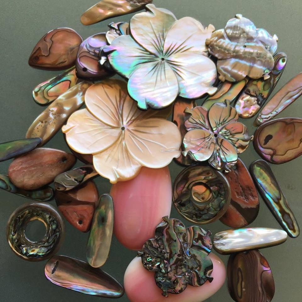 shells.jpeg