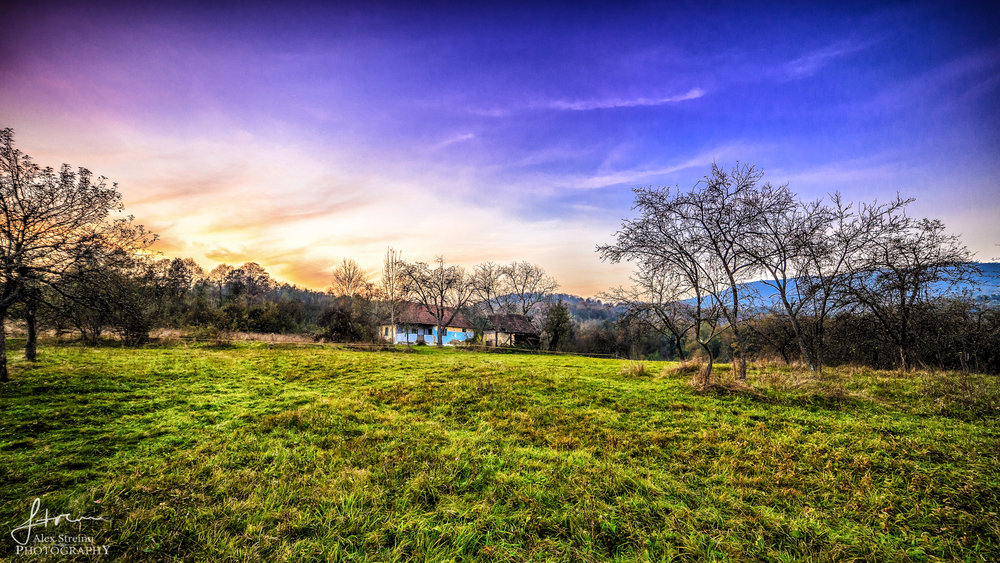Landscape by Alex Streinu (8).jpg