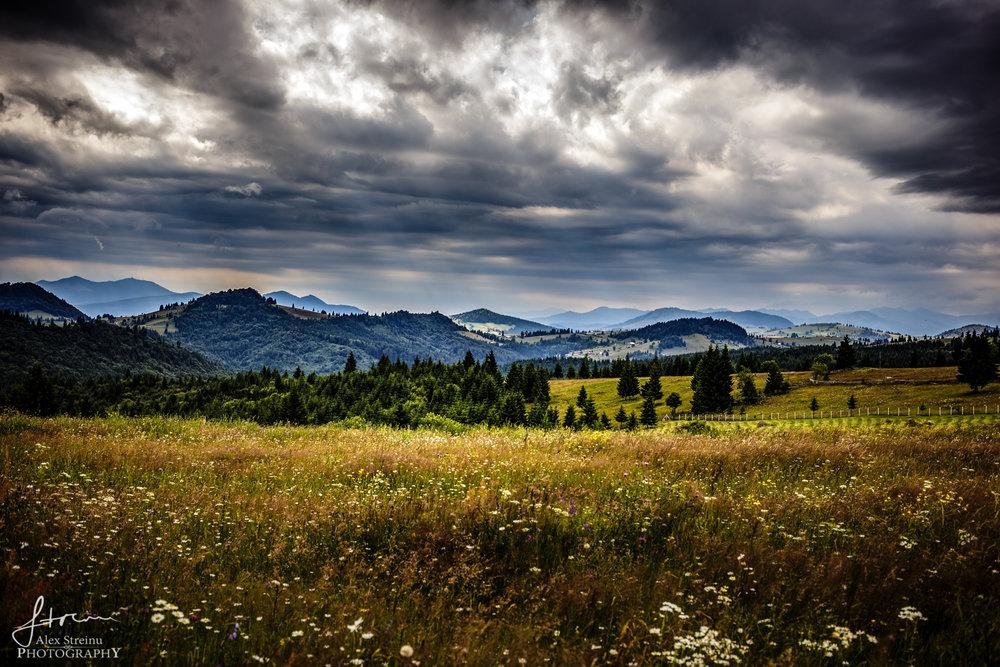 Landscape by Alex Streinu (15).jpg
