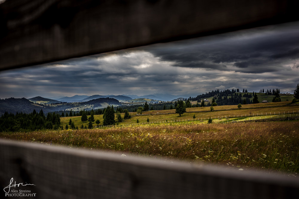 Landscape by Alex Streinu (16).jpg