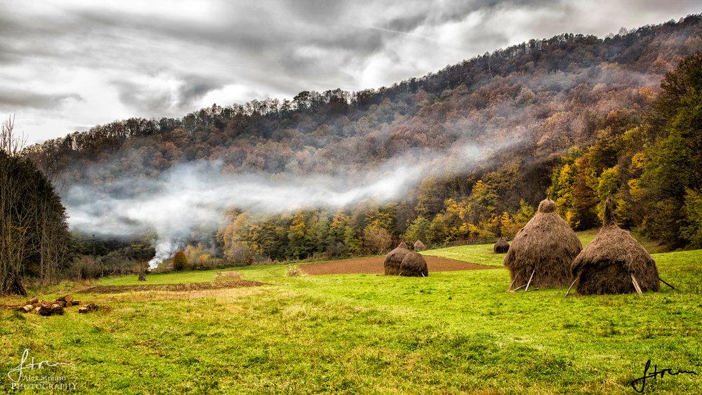 Landscape by Alex Streinu (20).jpg