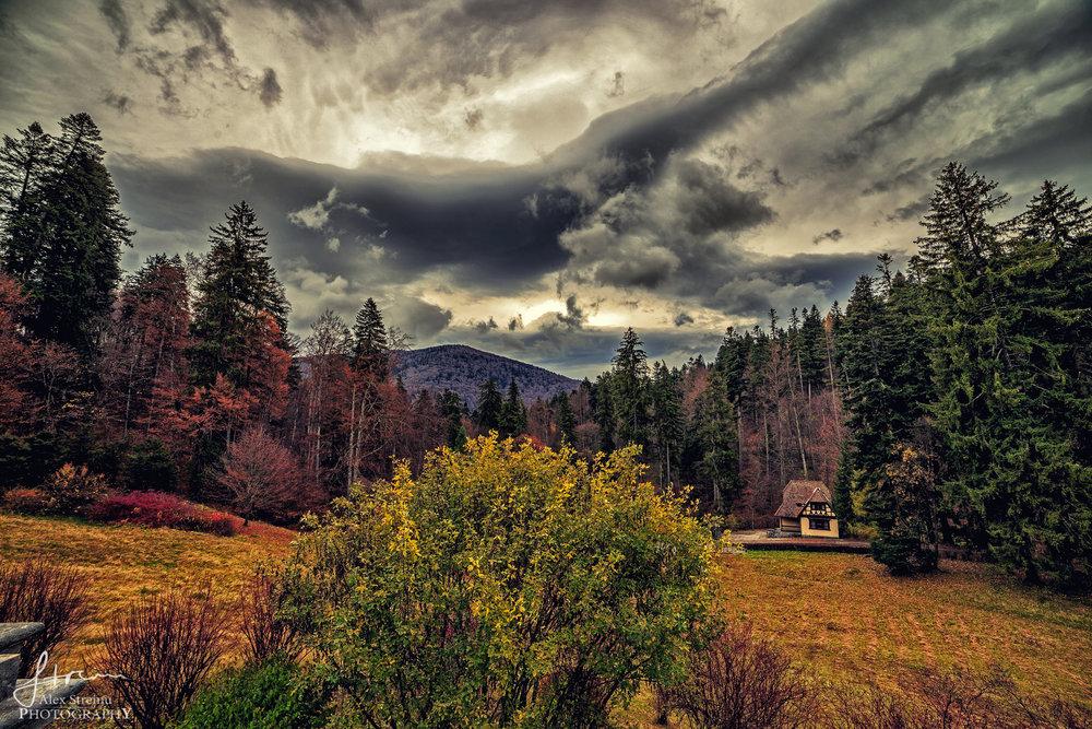 Landscape by Alex Streinu (23).jpg