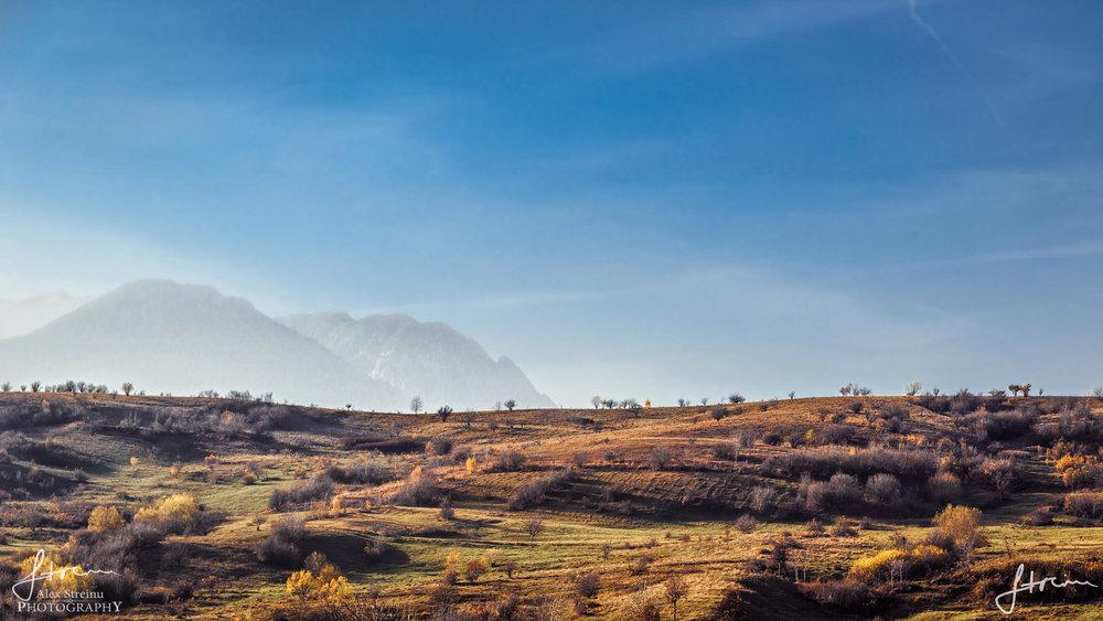 Landscape by Alex Streinu (29).jpg