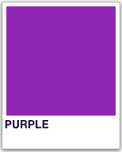 PMS_Purple.png
