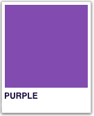 PMS_2587Purple.png