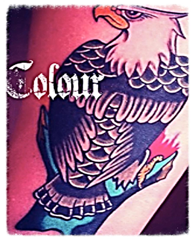 Color Tile.png