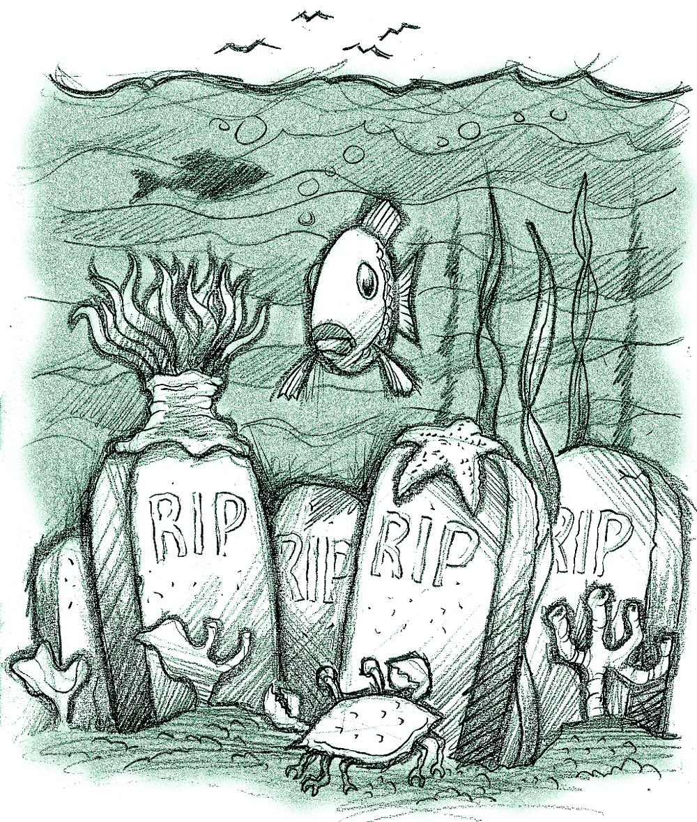 cremation_reef.jpg