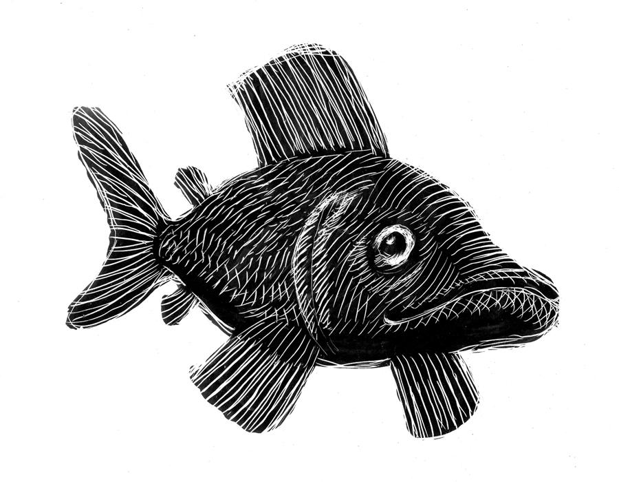 scratchboard_fish02.jpg
