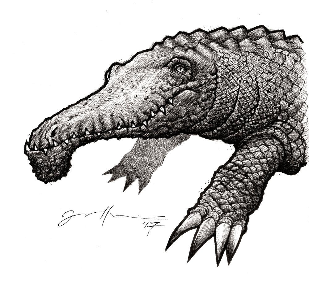 croc02.jpg